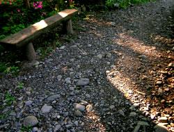 木漏れ陽を浴びるベンチ