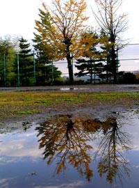 雨上がりの午後