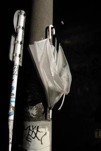 使い捨てられた傘@渋谷