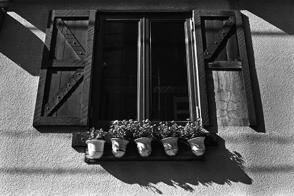 代々木にあるレストランの窓@モノクロ写真