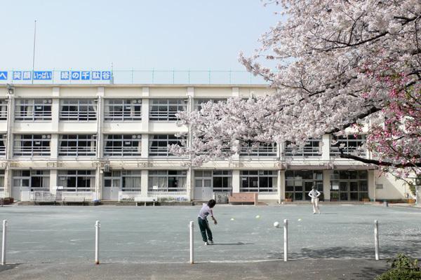 桜の咲く休日の小学校